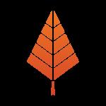 Tree-Orange